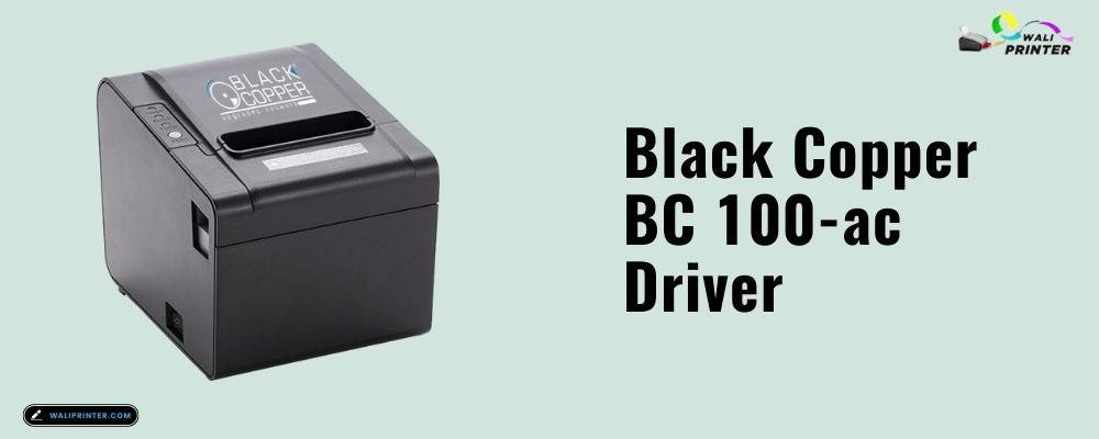 Black Copper BC 100-ac Driver